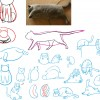 pre_drawcat_170530_09