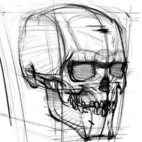 人体解剖结构绘画 的群组图标